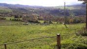 Azienda agricola Rimini