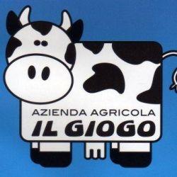 Azienda agricola iI Giogo